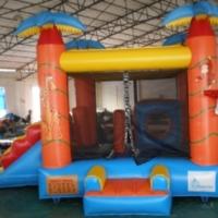 Safari-Combo-Bouncer-Slide1