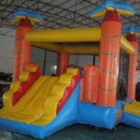 Safari-Combo-Bouncer-Slide2