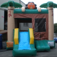 Zoo-Combo-Bounce-Slide2