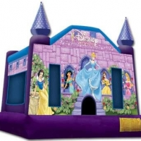 Disney Princess Bounce House 14x14x15